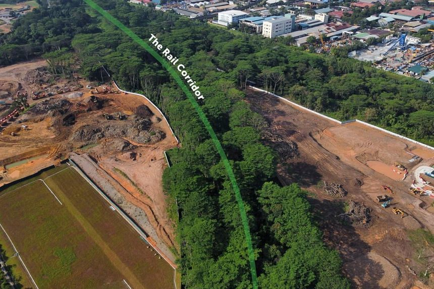On Feb 14, aerial footage circulating on social media showed that swathes of the vegetation flanking the Rail Corridor in Sungei Kadut had been cleared.