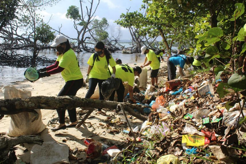 Seven Clean Seas' employees picking up trash and plastic waste from the coastlines of South-east Bintan in 2020.