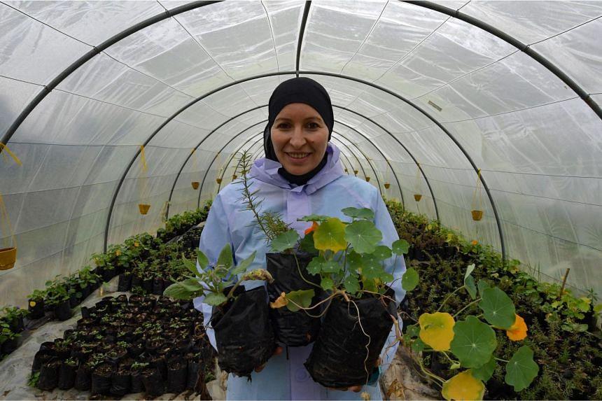 Ms Sonia Ibidhi with pots of nasturtiums in Tabarka, Tunisia, on Jan 28, 2021.
