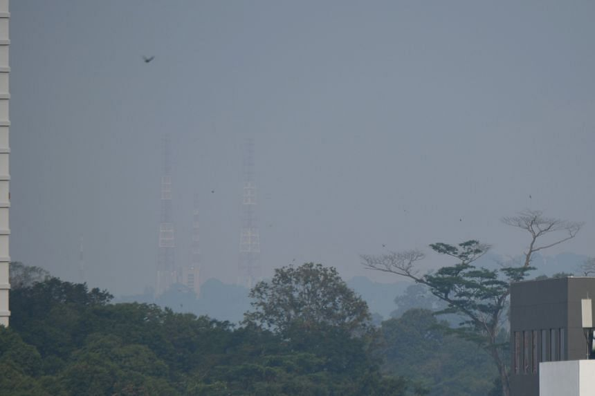 The haze as seen from Toa Payoh, in the direction of MacRitchie Reservoir, at 9.05am on March 1, 2021.