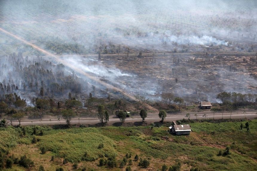 Fires in 2019 caused damage and economic losses amounting to at least US$5.2 billion.