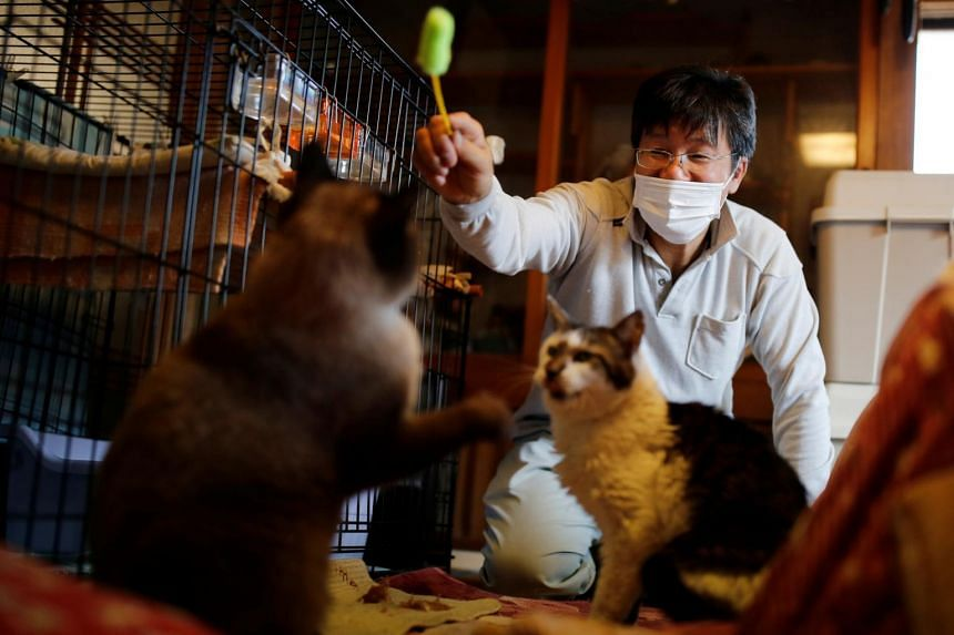 Sakae Kato plays with cats that he rescued at his home in Fukushima Prefecture, on Feb 20, 2021.
