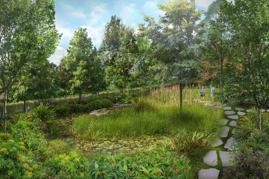 Artist impression of a new 7.6ha park to be built in Teachers' Estate near Upper Thomson by 2024.