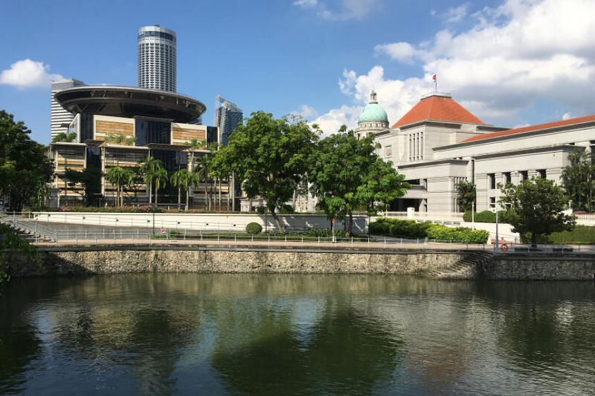 Bukit Batok MP Murali Pillai had suggested that certain laws exempt from review by the courts should be re-examined.