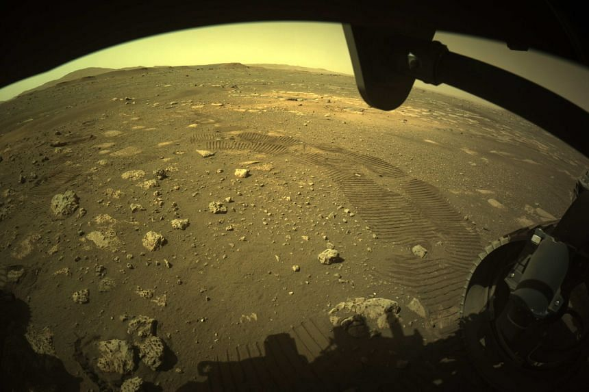 A Nasa photo shows tyre marks left by the Perseverance rover.