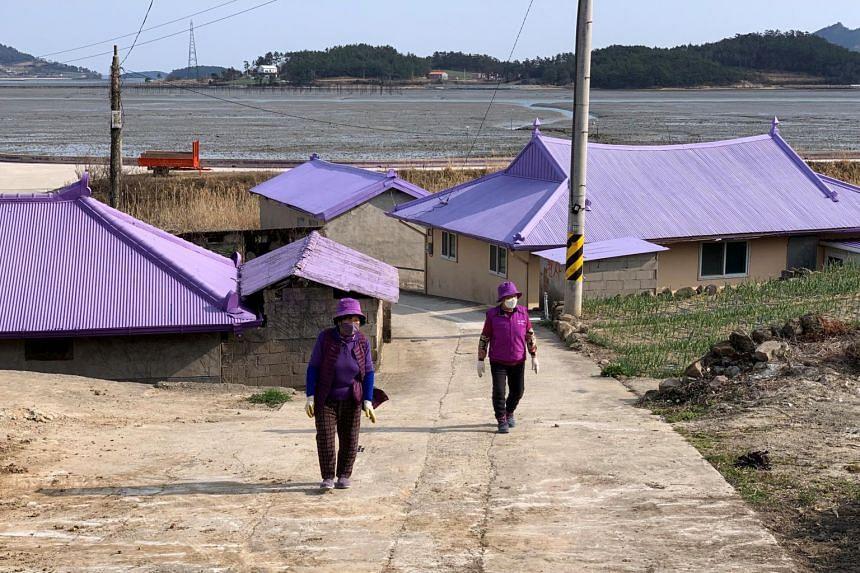 Residents of the Banwol and Bakji Islands, known as the 'Purple Islands', have painted their houses, roads and bridges in shades of purple.