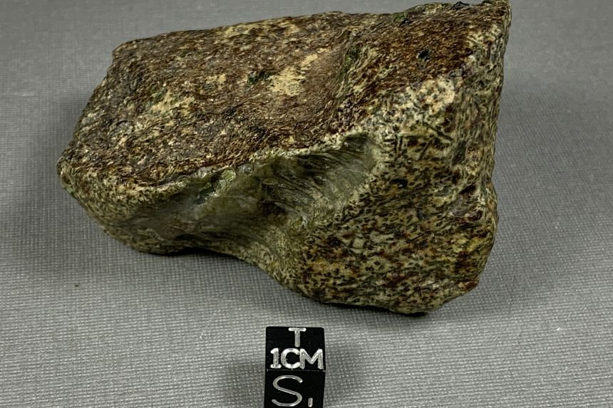 """The space rock has already proved an """"exceptional"""" witness to the building blocks of the planets."""