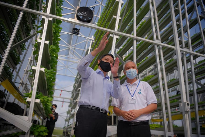 Trade and Industry Minister Chan Chun Sing, with Sky Greens founder Jack Ng, during a visit to the Sky Greens vertical vegetable farm.