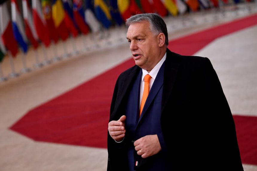 Prime Minister Viktor Orban and his followers have been promoting what they call conservative Christian values.