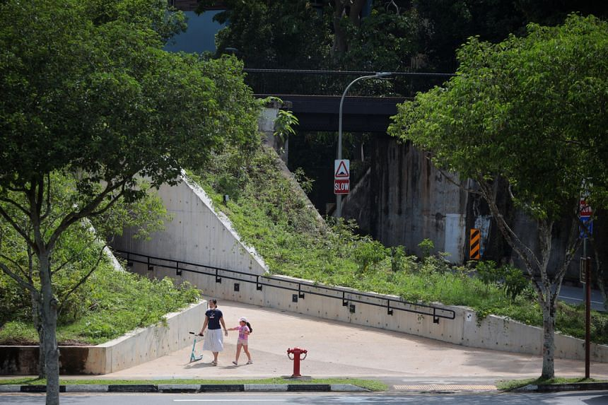 The 3.6m-wide underpass, which lies under an old rail bridge, was built parallel to Hindhede Drive.