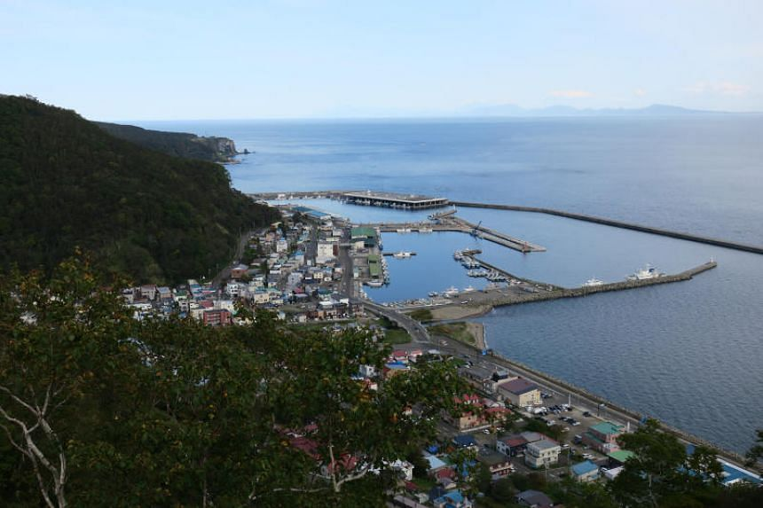 The island of Kunashiri (Kunashir), one of four groups of islands administered by Russia and claimed by Japan, is located 25km across the strait from the town of Rausu (pictured here) and is seen in the distance.