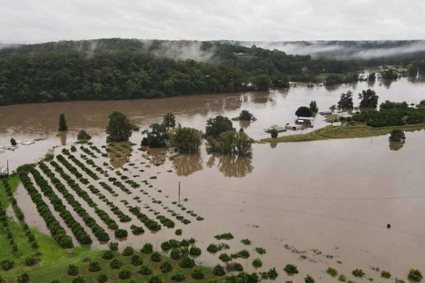 Floodwaters covering houses and orange orchards, near Hawkesbury River, on March 23, 2021.
