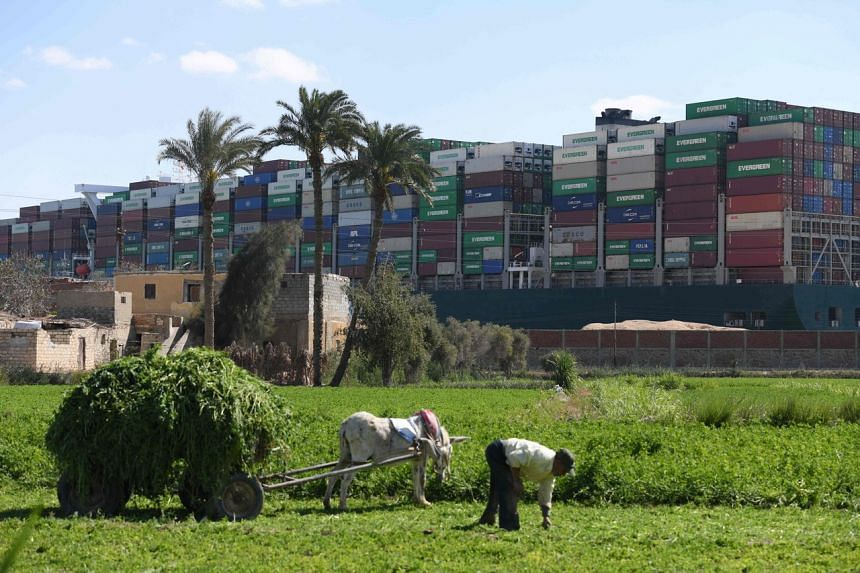 The Ever Given stands like a monument to globalisation marooned amid a typically Egyptian rural scene.