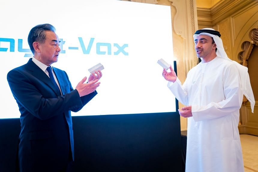 The deal was launched during a two-day visit to the UAE by Chinese Foreign Minister Wang Yi (left).