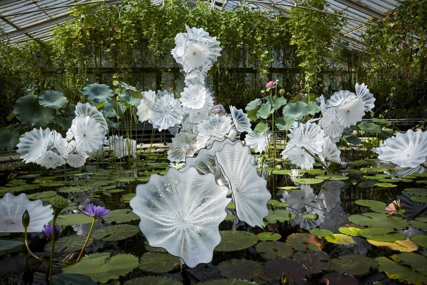 Dale Chihuly: Glass In Bloom will run from May 1 to Aug 1 and feature 25 of the artist's large-scale installations.