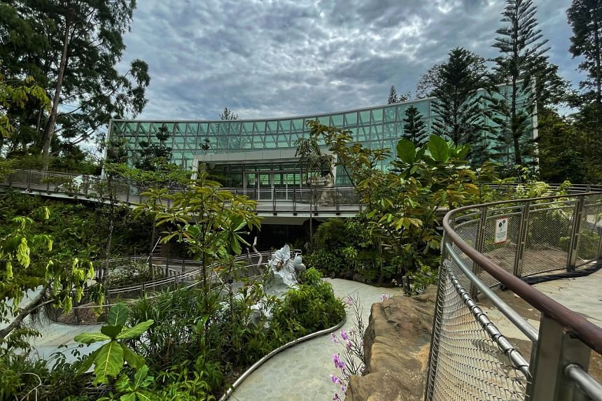 The Sembcorp Cool House was designed to emulate a high elevation montane forest existing at altitudes of 1,000m to 2,000m.