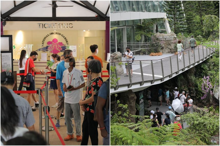 The spike in visitors follows the opening of the Tropical Montane Orchidetum, which includes the Sembcorp Cool House (right).