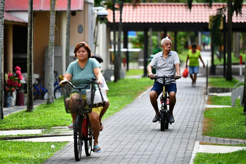 E-bikes are allowed on roads, cycling paths and shared paths such as park connectors. They are banned from footpaths.