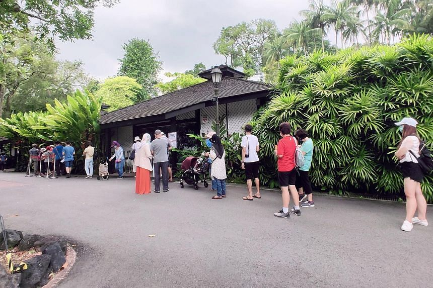 Visitors faced long queues to enter the National Orchid Garden yesterday, after it introduced an attraction designed to simulate the experience of ascending through a tropical cloud forest. More than 50 people were seen lining up at 11.30am and staff