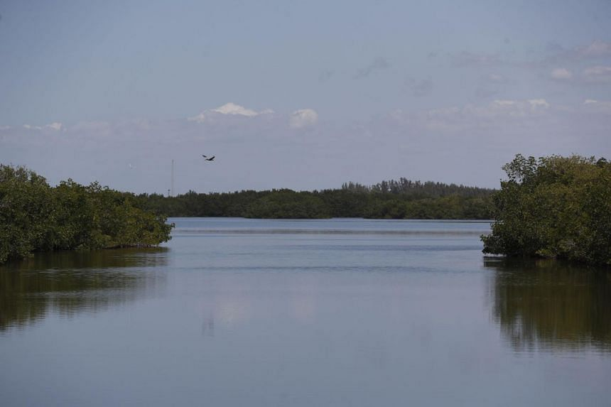 The US Army Corps of Engineers worked with local public safety teams to drain the Piney Point reservoir.