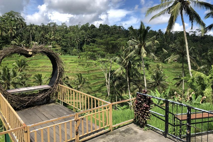 Ubud, Bali, is among five green zones slated to take in foreign visitors when Indonesia reopens to tourism.