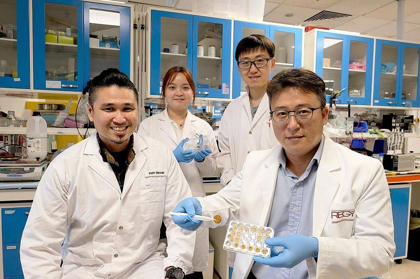 Among the research team members are (from far left) NTU PhD student Mohammed Shahrudin Ibrahim, NTU masters student Deng Jingyu, NTU research fellow Zhao Ze and Professor Cho Nam-Joon. To make the sponge, the research team first transformed tough pol