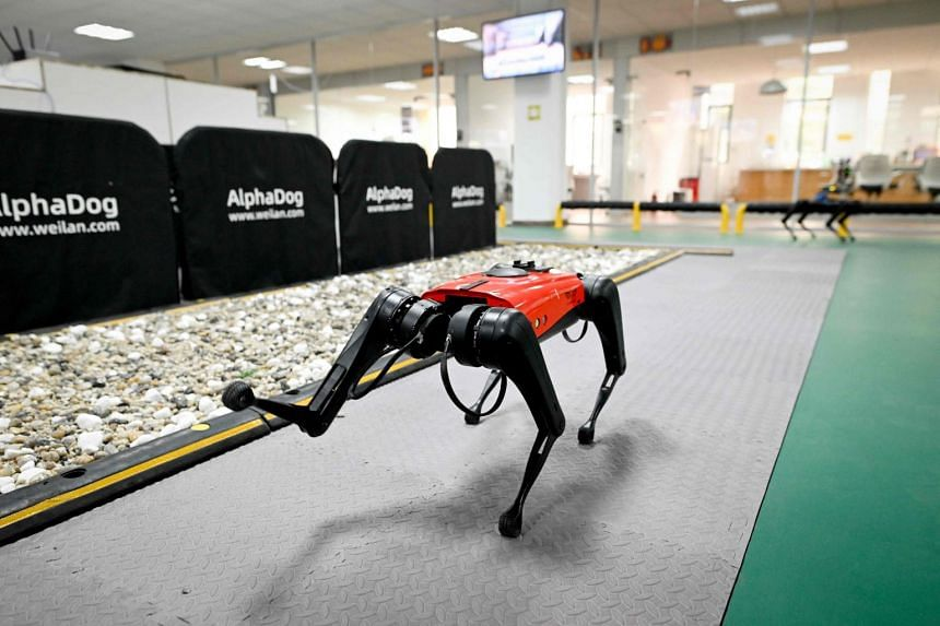 An AlphaDog quadruped robot in a workshop at the Weilan Intelligent Technology Corporation in Nanjing, China, on April 2, 2021.