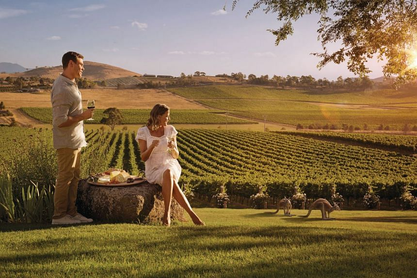 Sprawling vineyards, white sandy beaches, unique wildlife encounters, and delectable food and wine are just some of the dynamic travel experiences that Australia offers visitors. PHOTO: TOURISM AUSTRALIA