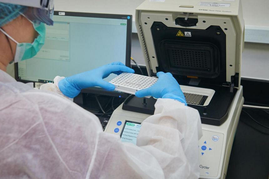 The Stronghold Diagnostics Lab is located in Biopolis, Singapore's biomedical hub in Buona Vista.