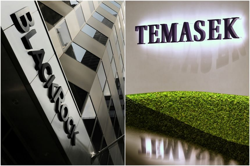 BlackRock and Singapore's Temasek Holdings formed a new firm, Decarbonization Partners.