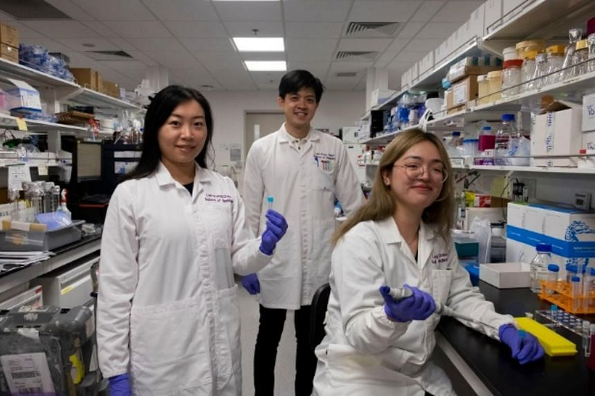 (From left) Assistant Professor Christine Cheung, research fellow Wu Kanxing and research assistant Florence Chioh from NTU's Lee Kong Chian School of Medicine.