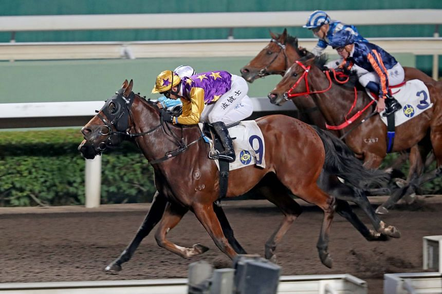 Amazing Chocolate (No. 9) should get every opportunity to put his best foot forward from the good gate in Race 9 at Sha Tin this afternoon.