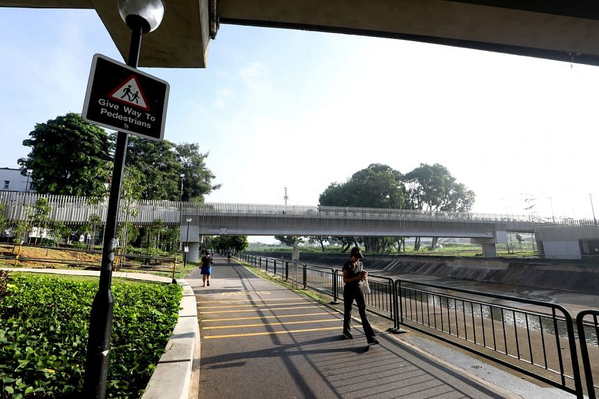 The bridge is next to the Villa Verde estate in Yew Tee and straddles both sides of the Pang Sua Canal.