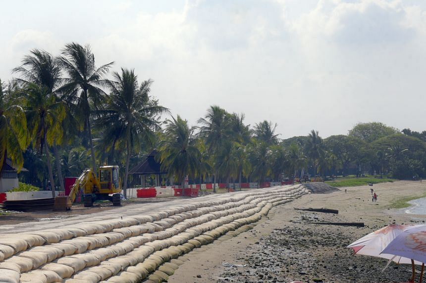 About 70 per cent of Singapore's coastline is currently guarded by hard structures, including sea walls and stone embankments.