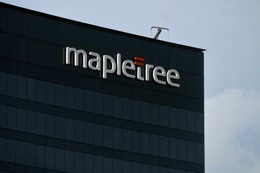 Mapletree owns four Singapore-listed Reits and six private equity real estate funds.