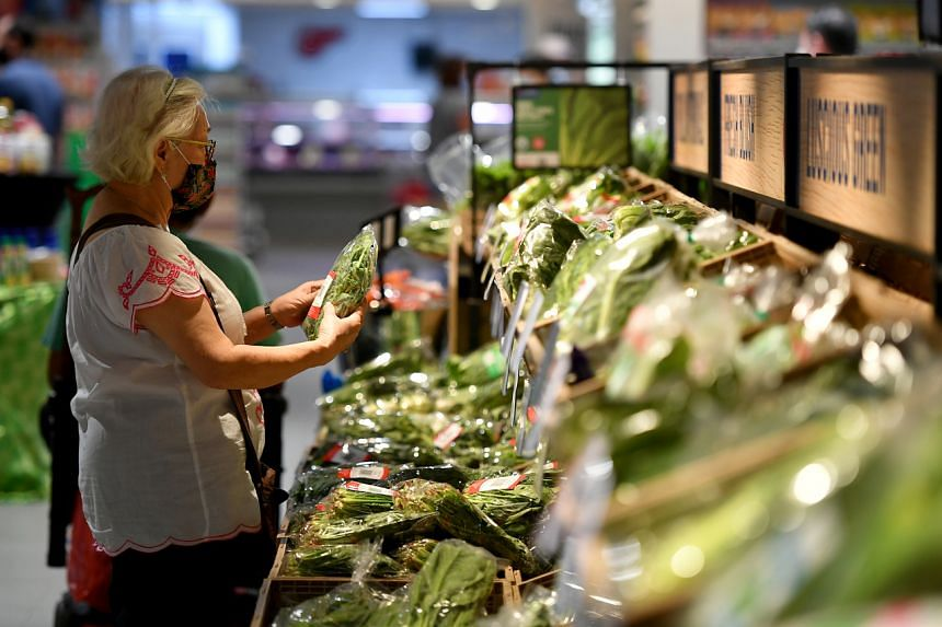 Four of the proposals aim to study how vegetables can be grown more efficiently in an urban setting, while another eight are related to aquaculture.