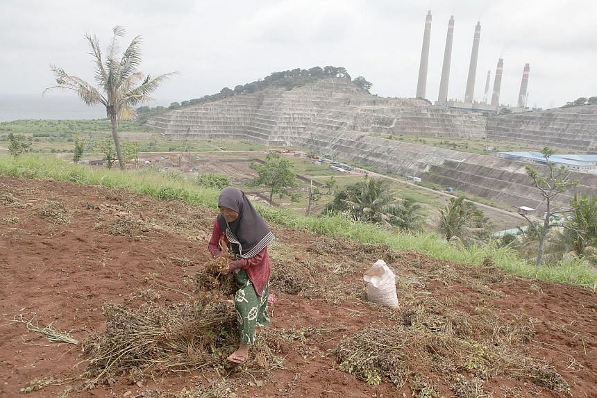 A farmer working the land near the power plant site. Conservationists say the 2,000MW coal-fired plant will add to pollution affecting nearby villages. The construction site of the Jawa 9 and 10 power plant in Banten province, west of Jakarta. A cons