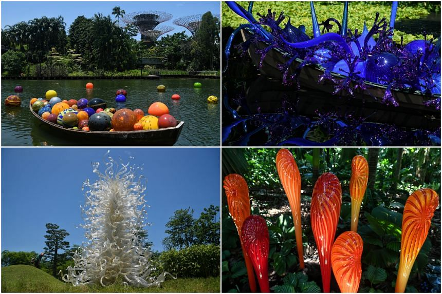 Some of the 140 works (Artwork © Chihuly) that will be on display during the Dale Chihuly: Glass in Bloom exhibition.