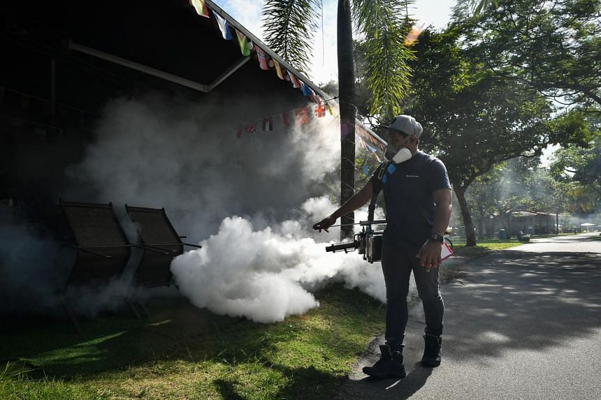 More than 2,000 dengue cases have been reported in Singapore so far this year, said NEA on April 29, 2021.