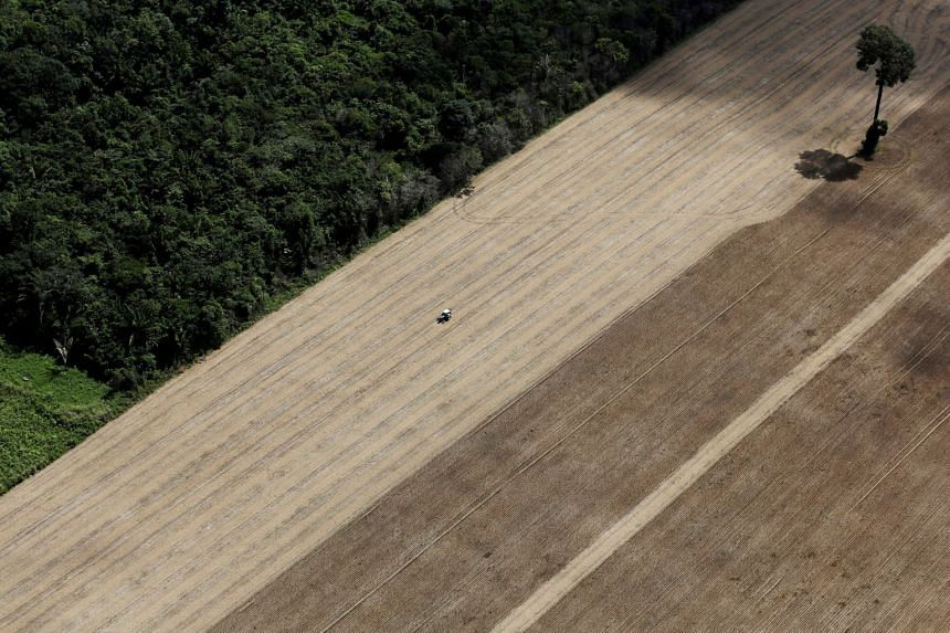A 2013 photo shows a tractor working on a wheat plantation, on land that used to be virgin Amazon rainforest in Brazil.