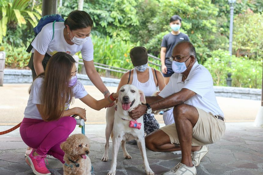 Mr Shanmugam (right) was accompanied by his dog Milly during a short walk at the Botanic Gardens on May 1, 2021.