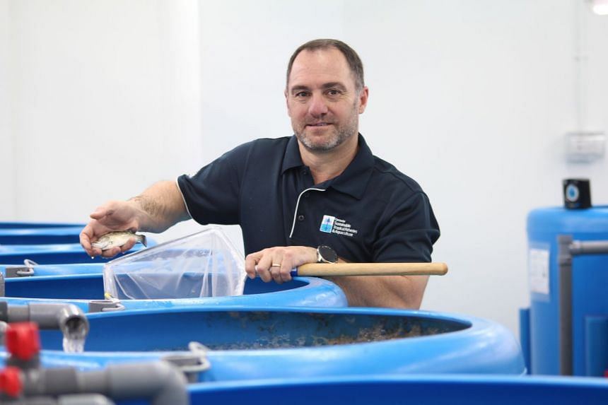In this episode of Green Pulse, we speak with Professor Dean Jerry (pictured), an aquaculture expert from the Singapore campus of the James Cook University, about the implications of seafood consumption and the role of aquaculture in feeding the worl