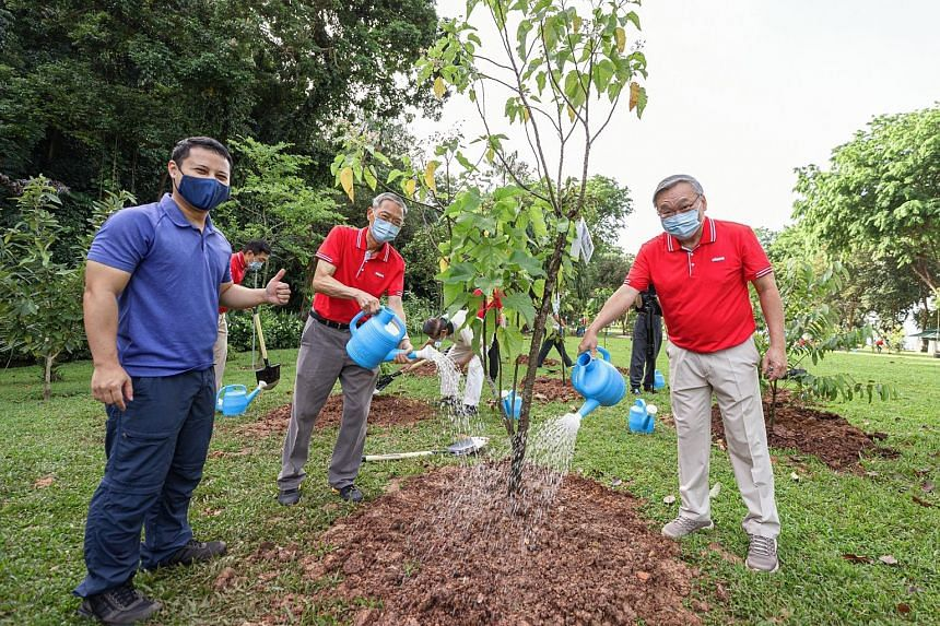 (From far left) National Development Minister Desmond Lee, Keppel Care Foundation chairman Lee Boon Yang and Keppel Corp chairman Danny Teoh at a tree-planting event in Labrador Nature Reserve yesterday. Keppel Corp contributed 50 trees to the reserv