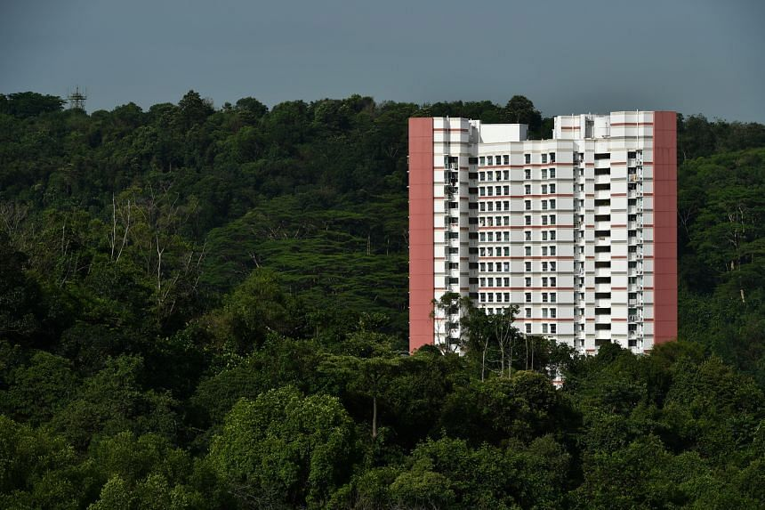 Singapore has been taking significant steps to curb the country's carbon emissions growth.