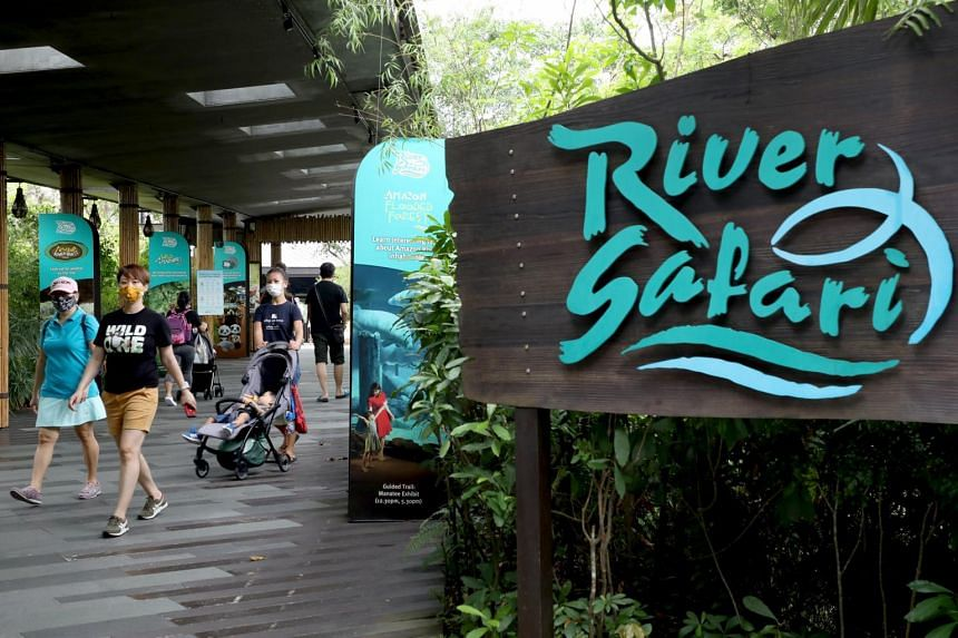 The award recipients include River Safari, one of the three of the wildlife parks operated by Wildlife Reserves Singapore.