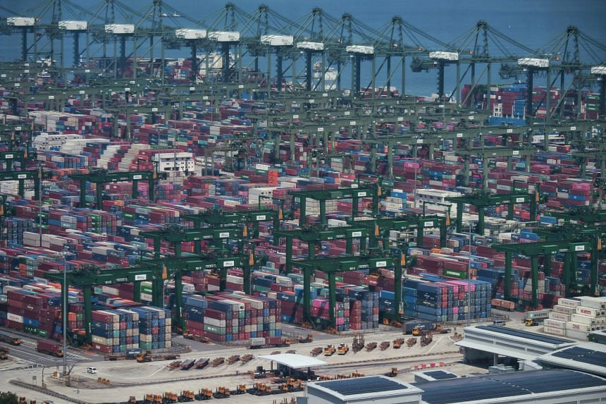 The latest case is a 59-year-old trailer truck driver who works at Brani Terminal and Pasir Panjang Terminal (pictured).