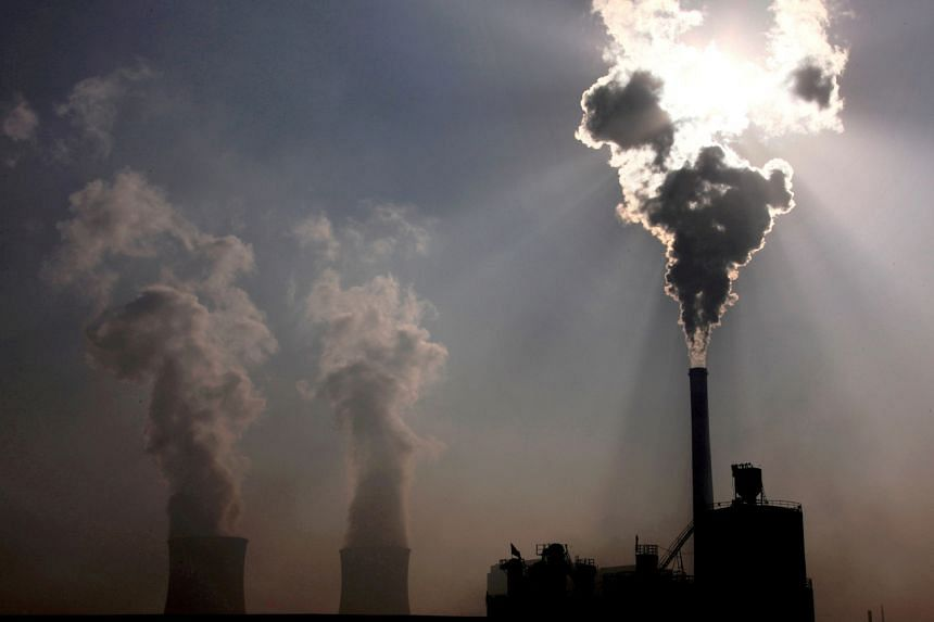 China still needs coal-fired power plants for electricity while developing cleaner sources of energy, says an expert.