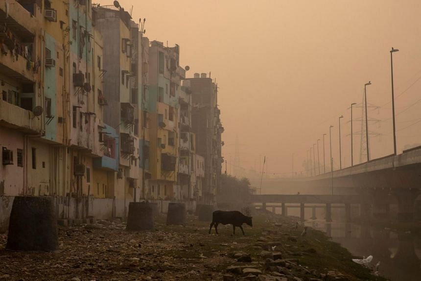 India is home to 13 of the 20 riskiest cities in the world, a result of its extreme levels of air and water pollution.