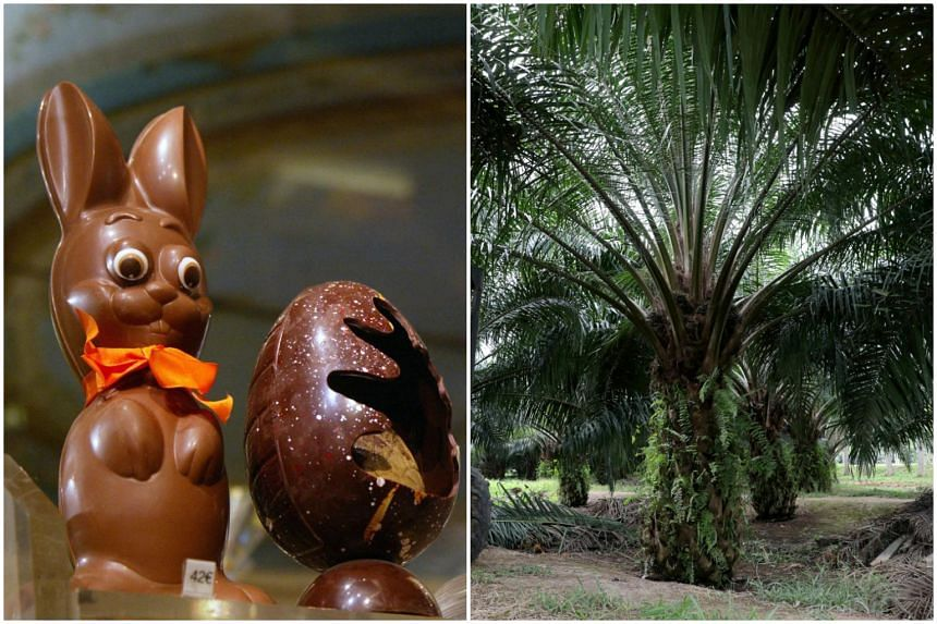 Palm oil is found in products as diverse as chocolate, pastries, soaps, lipstick and biofuel.