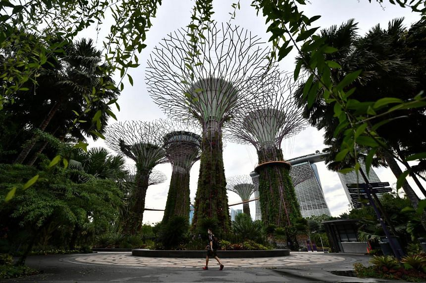 The SG Eco Fund supports the Singapore Green Plan 2030, a roadmap that charts a more sustainable path forward for the Republic.